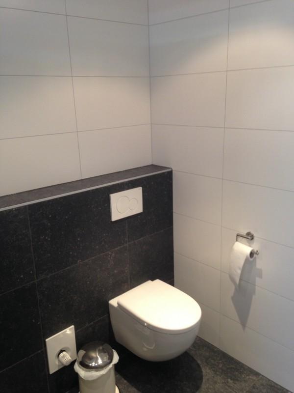 Toilet pot met softclose toiletzitting
